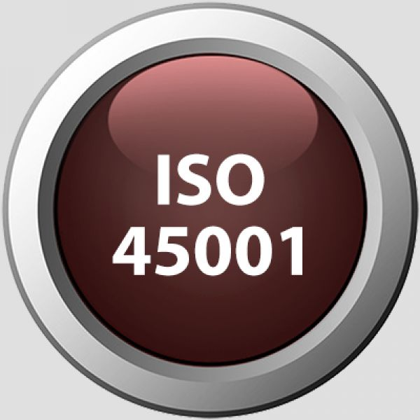 ISO 45001 : 2018 (OHSAS 18001 : 2007)